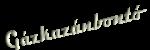 Junkers Bosch ZR/ZSR/ZWR vezérlőpanel
