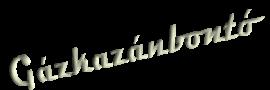 Saunier Duval földgáz fúvóka